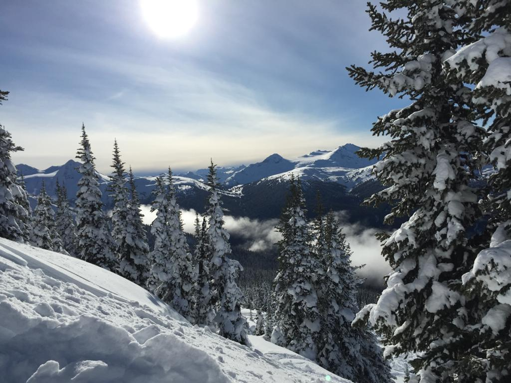 Whistler: A Complete Guide