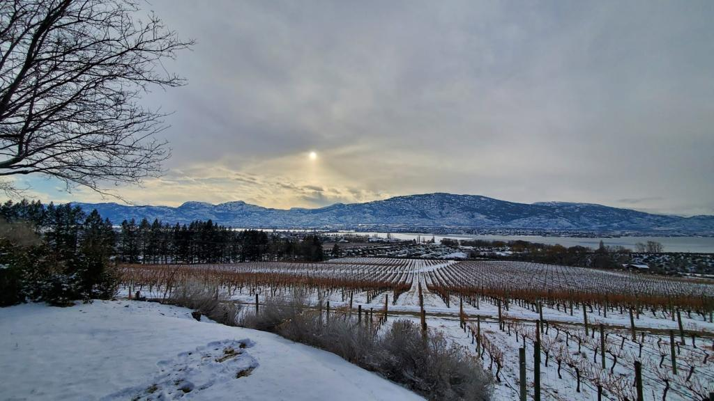 The Perfect Wine Weekend in Osoyoos, BC